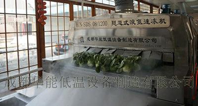 速凍蔬菜.jpg